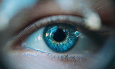 L'occhio del tutto